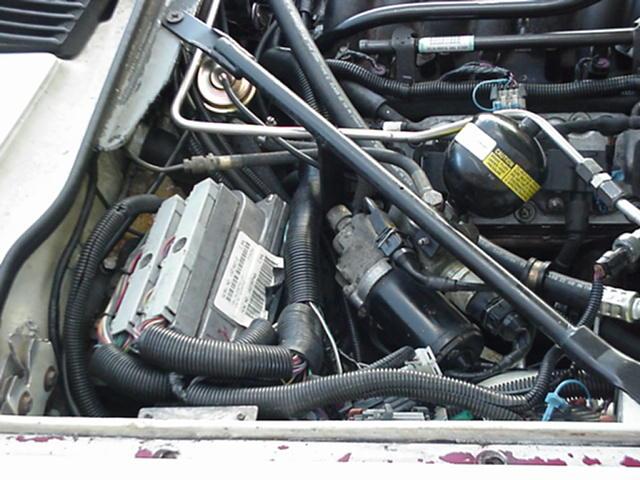 LS1 wiring pcm mount jaguar specialties Wiring Specialties SR20DET at gsmx.co